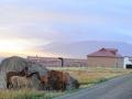 adlf20150115-cine-patagonia-0172-(2).jpg
